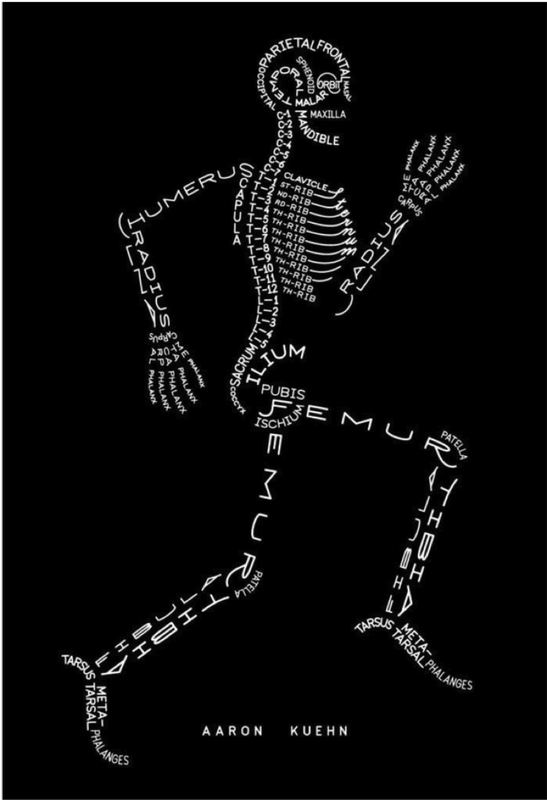 Bio Jokes Msancois Anatomy Physiology Class The Human Body